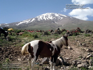 Mt Damavand Base Camp